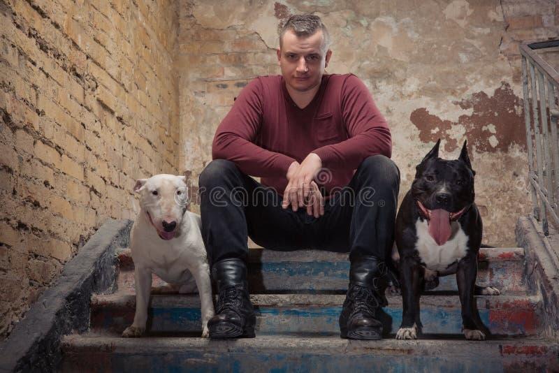 Uomo brutale in maglione o pullover rosso che si siede sulle scale di pietra con il fronte serio contro il fondo di una parete de fotografie stock libere da diritti