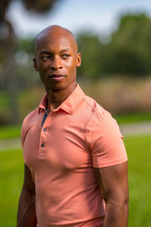 Uomo calvo afroamericano bello del ritratto che porta una camicia di polo rosa immagini stock