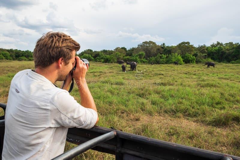 Uomo caucasico in camicia bianca che fa le foto del gregge dell'elefante durante il safari in parco nazionale dello Sri Lanka fotografie stock
