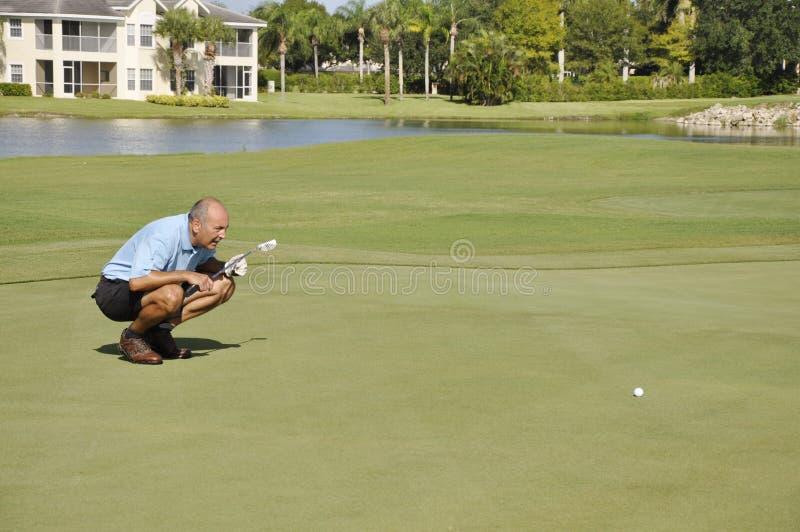 Uomo che allinea colpo sul terreno da golf fotografia stock libera da diritti