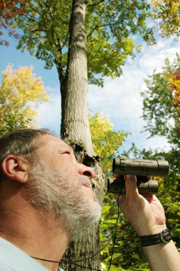 Uomo che birdwatching immagine stock libera da diritti