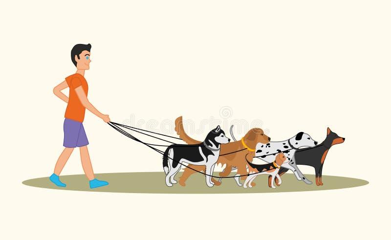 Uomo che cammina molti cani delle razze differenti illustrazione di stock