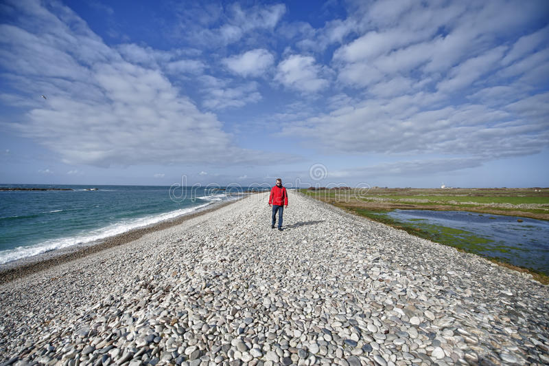 Uomo che cammina sul lato di mare immagine stock libera da diritti