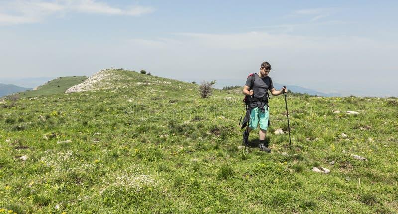 Uomo che fa un'escursione in montagne verdi fotografie stock libere da diritti