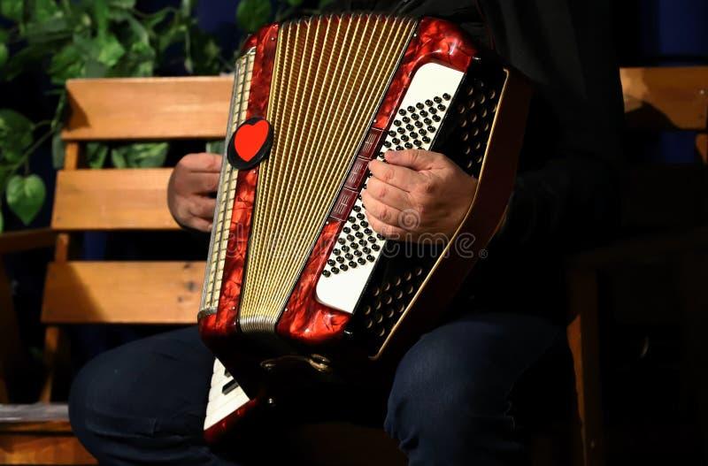 Uomo che gioca fisarmonica, mani fotografia stock libera da diritti