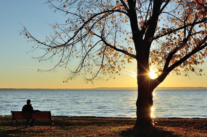 Uomo che guarda l'alba sopra un lago verso la fine della caduta fotografia stock libera da diritti