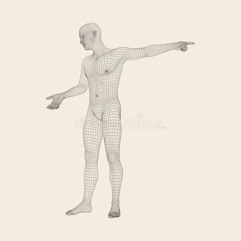 Uomo che indica la sua barretta modello 3D dell'uomo Progettazione geometrica Illustrazione di vettore pelle poligonale della cop illustrazione vettoriale