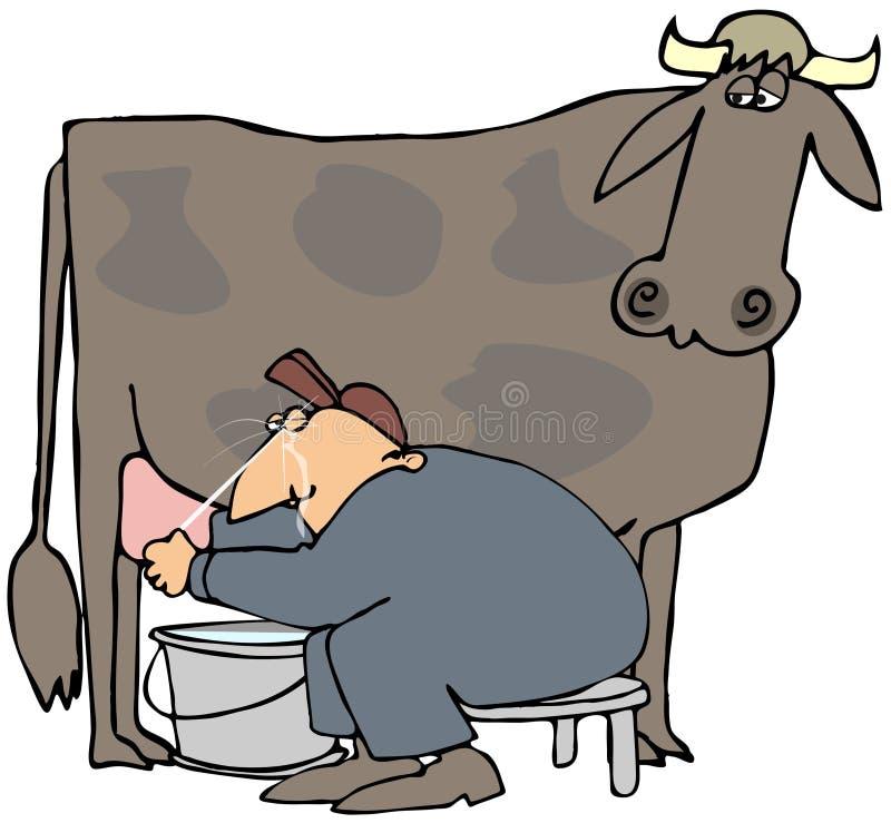 Uomo che munge una mucca illustrazione di stock