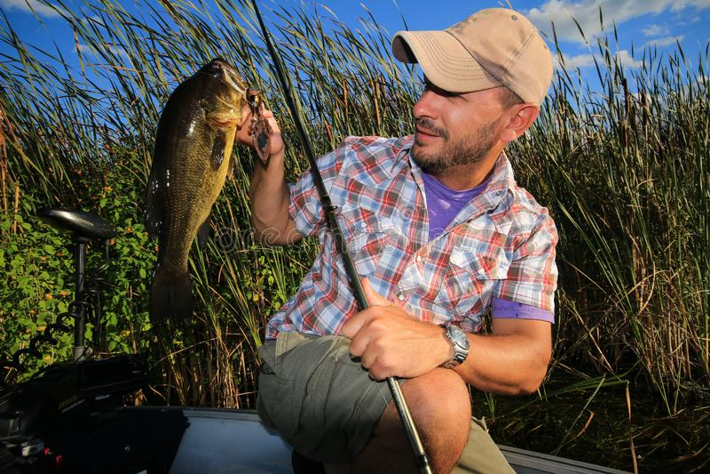 Uomo che pesca il grande persico trota della bocca fotografie stock