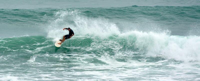 Uomo che pratica il surfing nel parco regionale Nuova Zelanda di Tawharanui fotografia stock