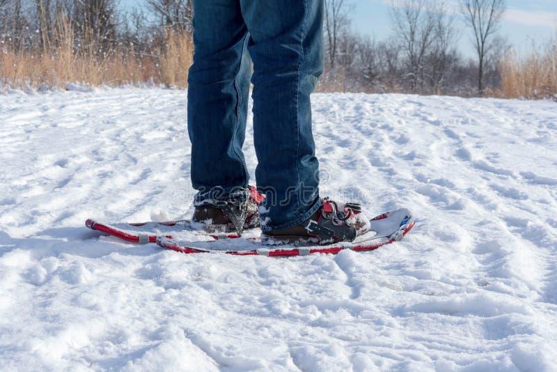 Uomo che si dirige fuori per una passeggiata di inverno in racchette da neve fotografia stock