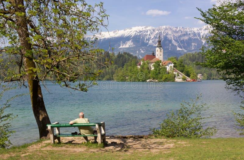 Uomo che si siede su un banco nel lago sanguinato immagine stock libera da diritti