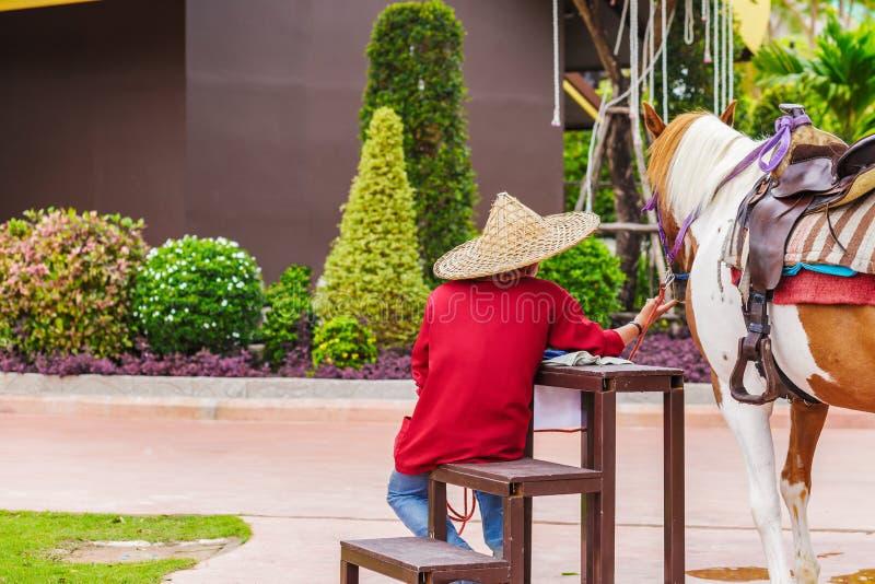 Uomo che si siede vicino il cavallo e lui per portare cappello immagini stock libere da diritti