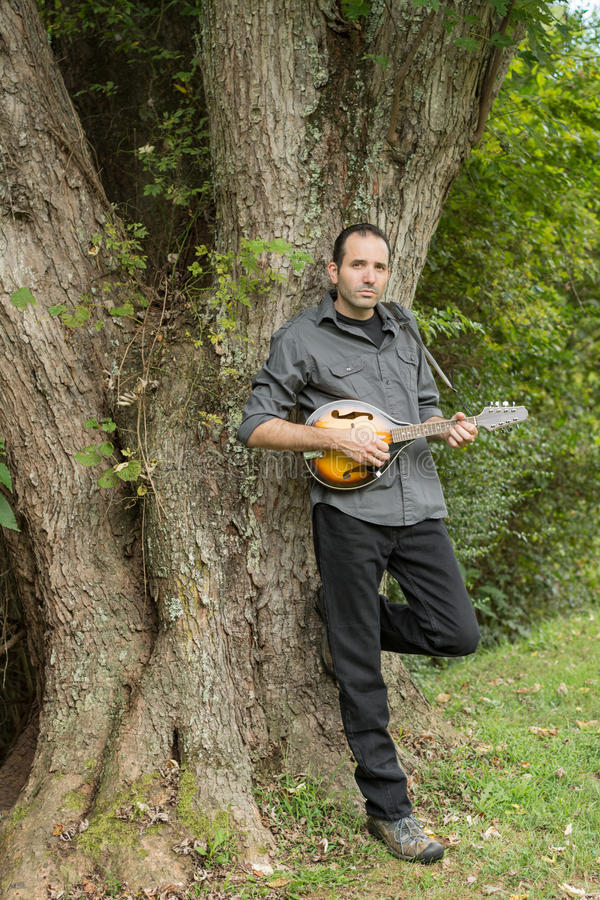 Uomo che sta e che pende Againest un albero che strimpella un mandolino immagini stock libere da diritti