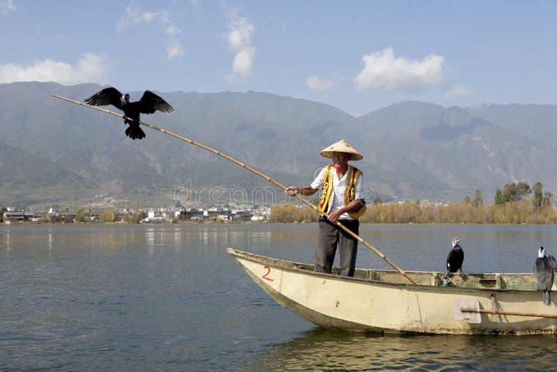 Uomo cinese di Bai con il Cormorant fotografie stock libere da diritti