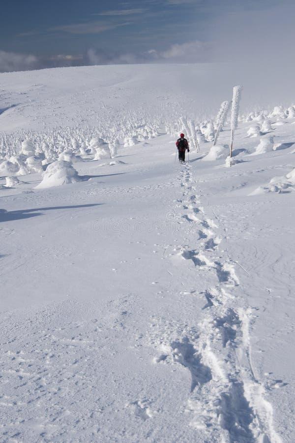 Uomo con gli snowshoes fotografie stock