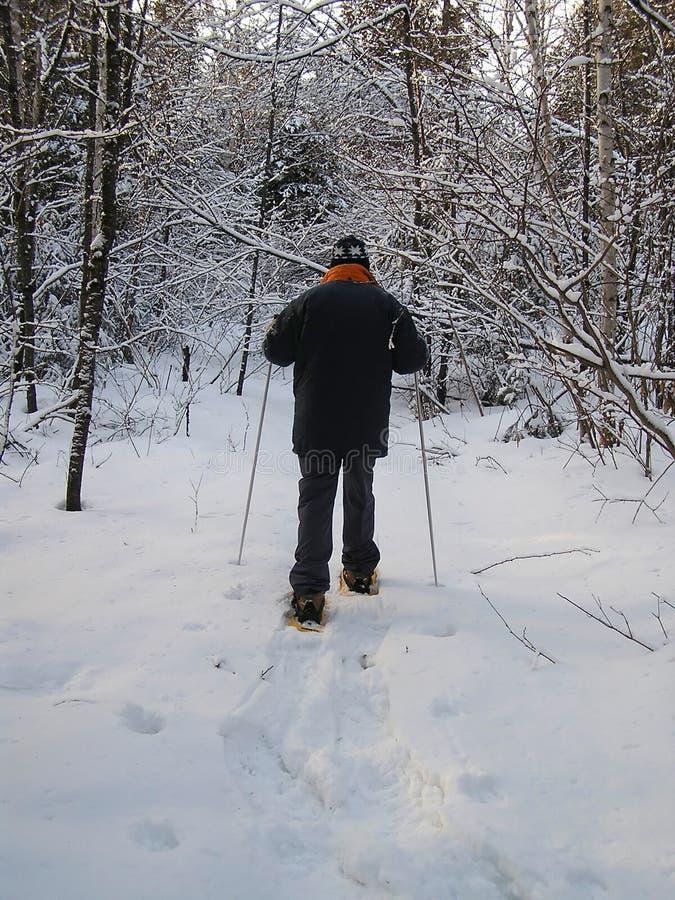 Uomo con gli snowshoes fotografia stock