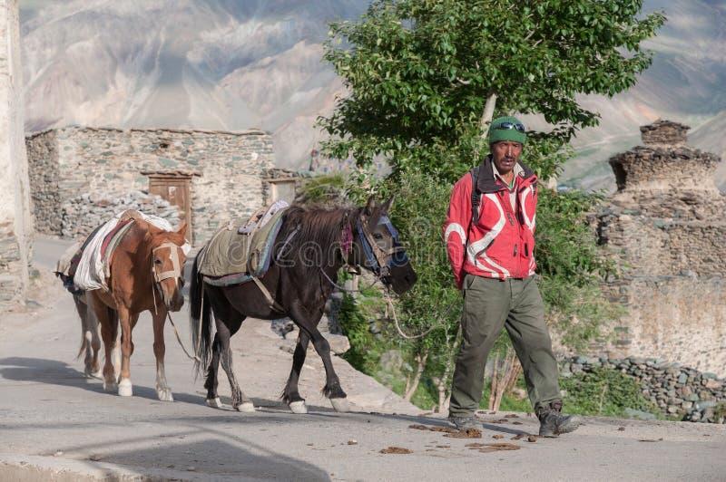 Uomo con i cavalli, paesano nella regione montana di Ladakh India fotografia stock libera da diritti