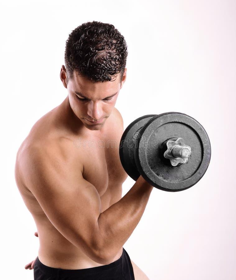 Uomo con i pesi delle teste di legno che fanno esercizio dei bieps immagini stock