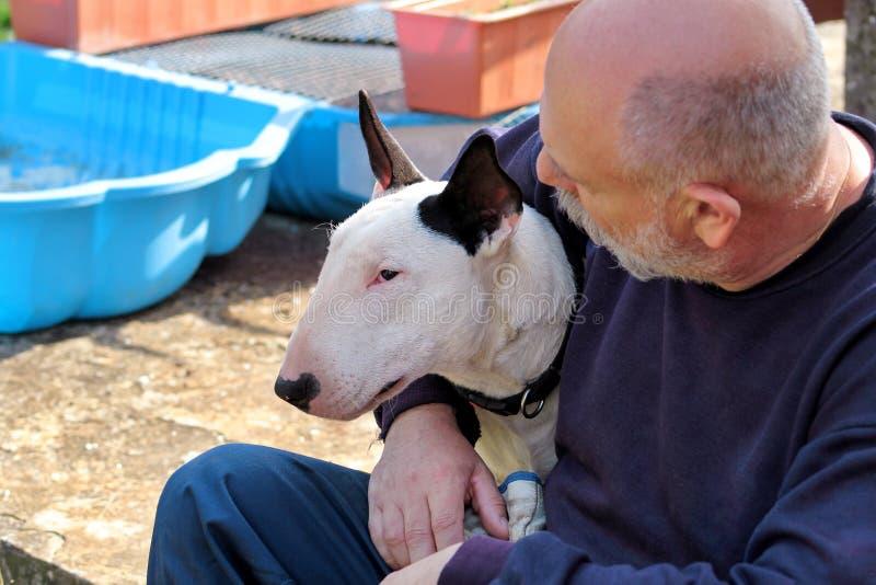 Uomo con il cane Cane bianco di bull terrier di inglese in compagnia del suo proprietario che si siede e che gode nel giardino al immagine stock libera da diritti