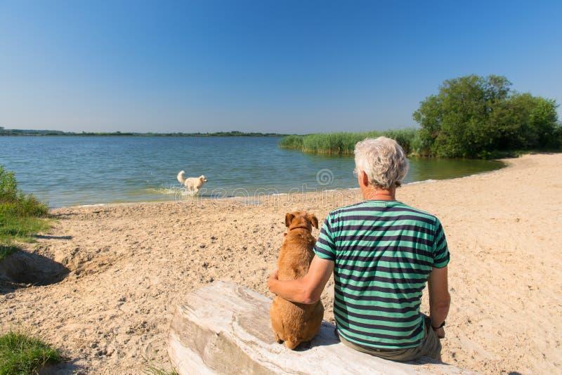 Uomo con il cane nel paesaggio con il fiume immagine stock