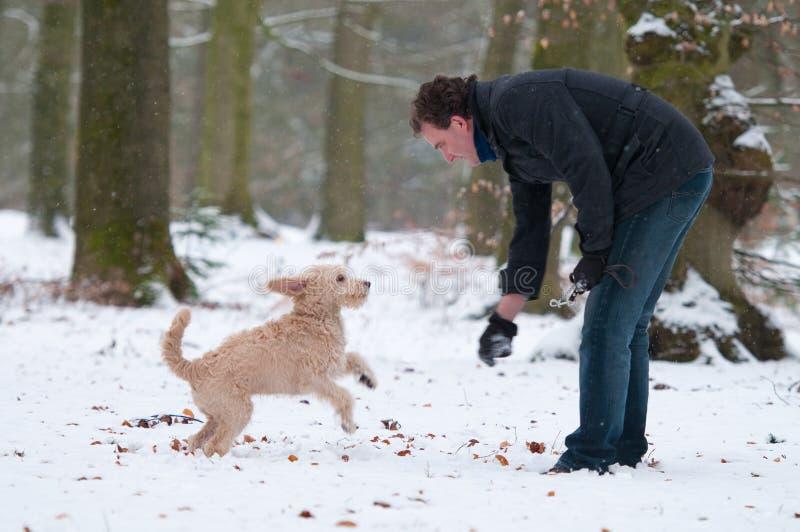 Uomo con il cucciolo fotografia stock libera da diritti