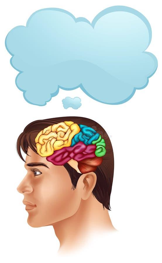 Uomo con il diagramma ed il fumetto del cervello illustrazione di stock