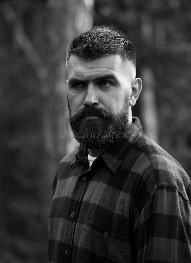 Uomo con il fronte rigoroso e barba in plaid, camicia a quadretti, fotografia stock libera da diritti