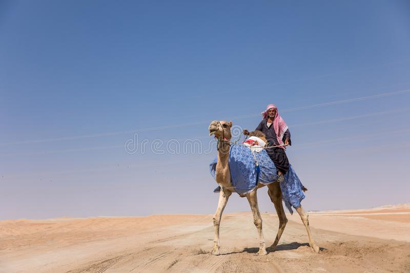 Uomo con il suo cammello in un deserto fotografie stock libere da diritti