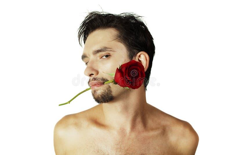Uomo con una rosa nella sua bocca su una priorità bassa bianca fotografia stock libera da diritti