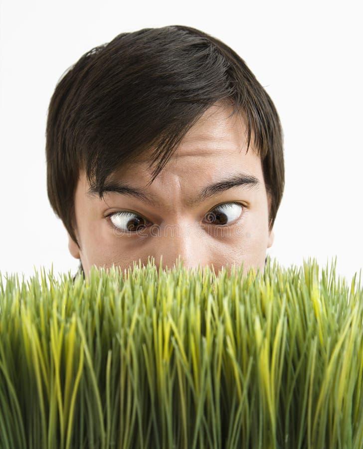 Uomo Cross-eyed dietro erba. fotografia stock