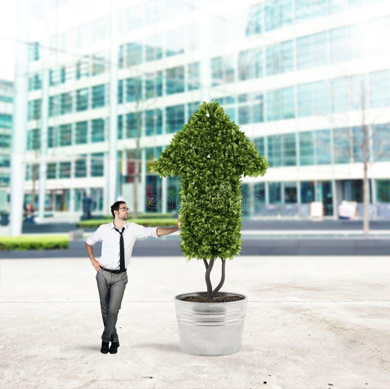 Uomo d'affari che coltiva una pianta con una forma della freccia Concetto di crescita dell'economia della società fotografie stock