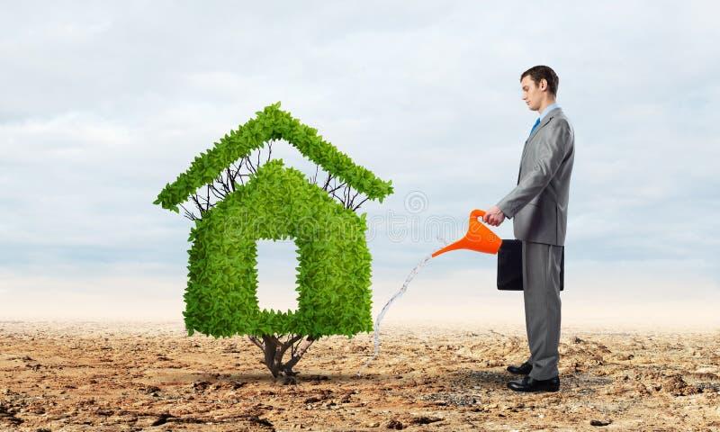 Uomo d'affari che innaffia pianta verde nella forma della casa immagini stock libere da diritti