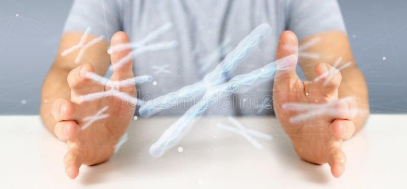 Uomo d'affari che tiene un gruppo di cromosoma con DNA dentro isolato su una rappresentazione del fondo 3d immagini stock