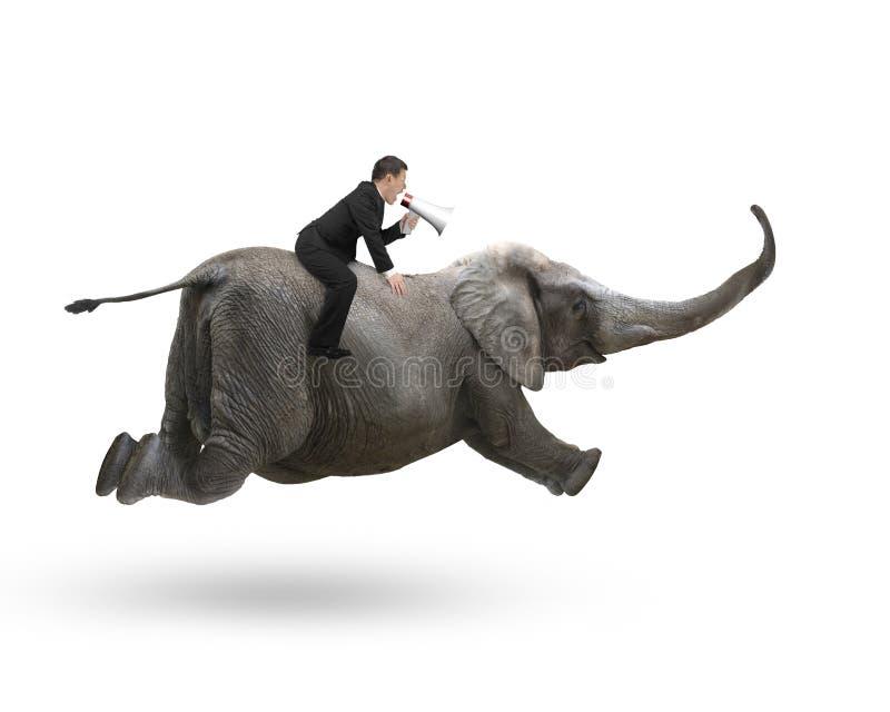 Uomo d'affari con usando guida dell'altoparlante sull'elefante fotografia stock libera da diritti