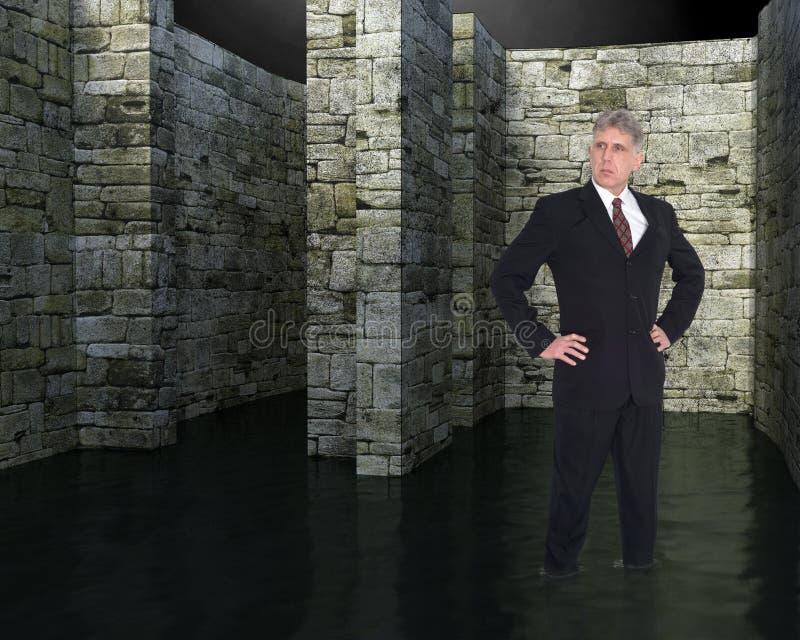 Uomo d'affari perso, labirinto, difficoltà, capo fotografie stock