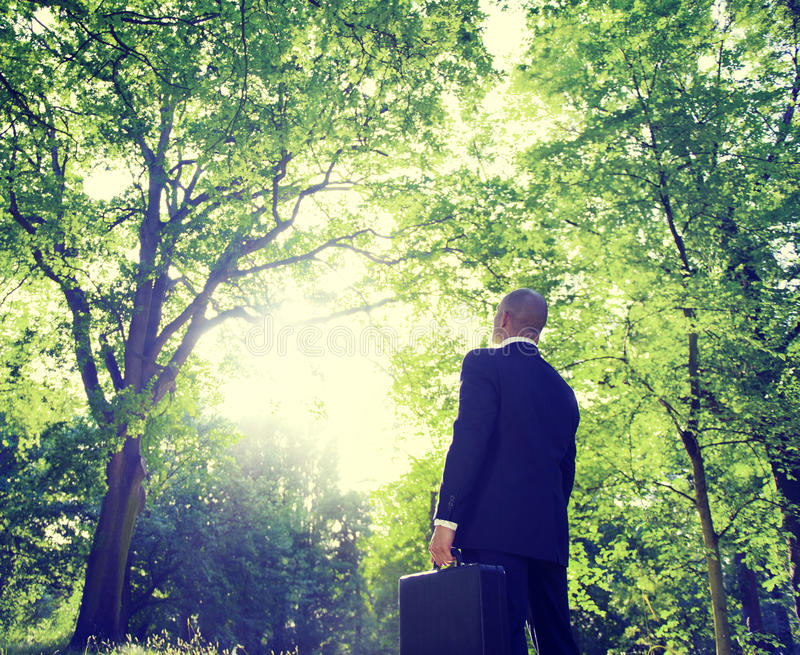 Uomo d'affari Among Trees In la natura fotografia stock libera da diritti