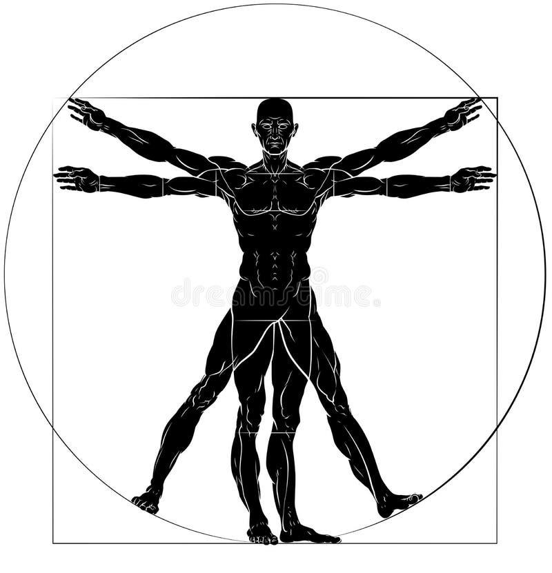 Uomo Da Vinci Style Figure di Vitruvian illustrazione vettoriale