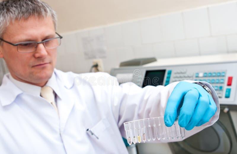Uomo del laboratorio con le provette fotografia stock