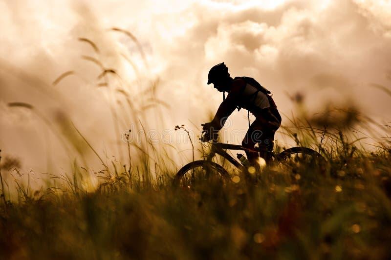 Uomo della bici di montagna all'aperto fotografia stock libera da diritti