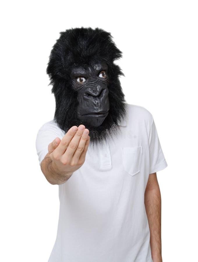 Uomo della gorilla fotografia stock