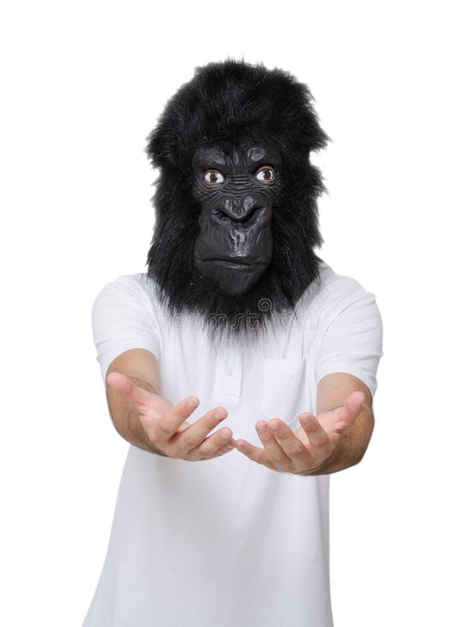 Uomo della gorilla fotografia stock libera da diritti