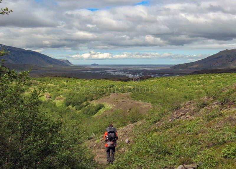 Uomo della viandante da solo nel paesaggio vulcanico pieno d'ammirazione selvaggio della valle islandese verde Traccia di escursi fotografie stock libere da diritti