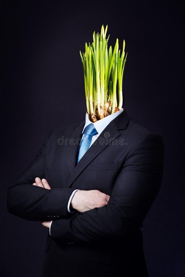 Download Uomo Di Affari Con La Testa Verde Del Narciso Fotografia Stock - Immagine di manipolazione, professionista: 30825230
