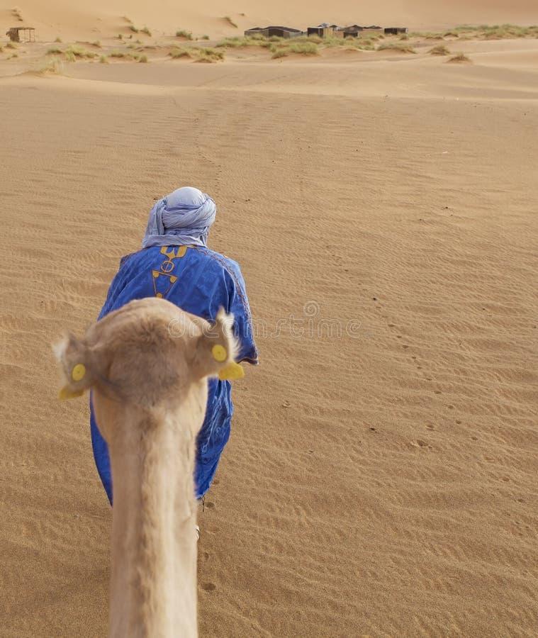 Uomo di Berber con il cammello fotografie stock libere da diritti