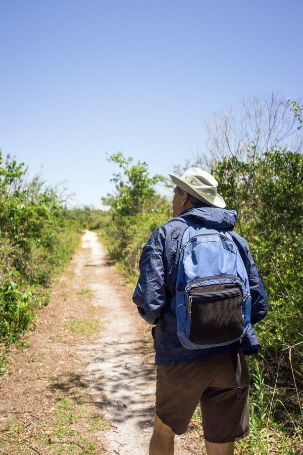 Uomo di birdwatching che fa un'escursione su un percorso in parco nazionale immagine stock libera da diritti