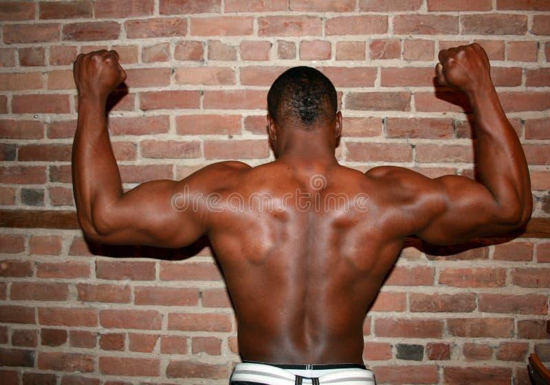 Uomo di colore muscolare - posteriore immagine stock