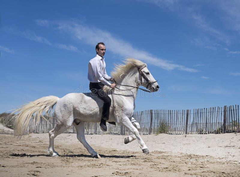 Uomo di guida sulla spiaggia fotografia stock libera da diritti