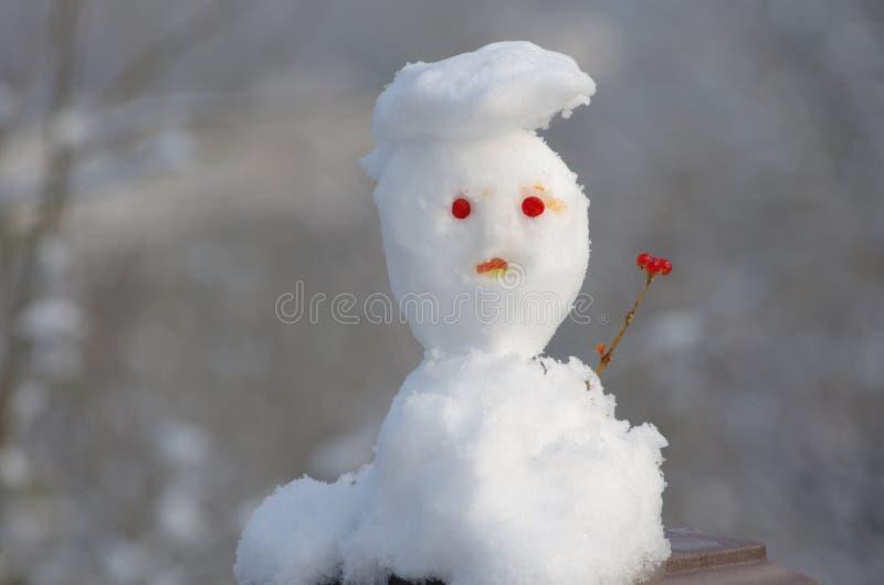 Uomo di neve con cappello immagini stock libere da diritti