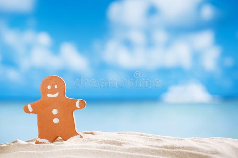 Uomo di pan di zenzero sulla spiaggia con il fondo di vista sul mare immagini stock